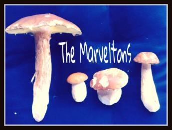 The Marveltons